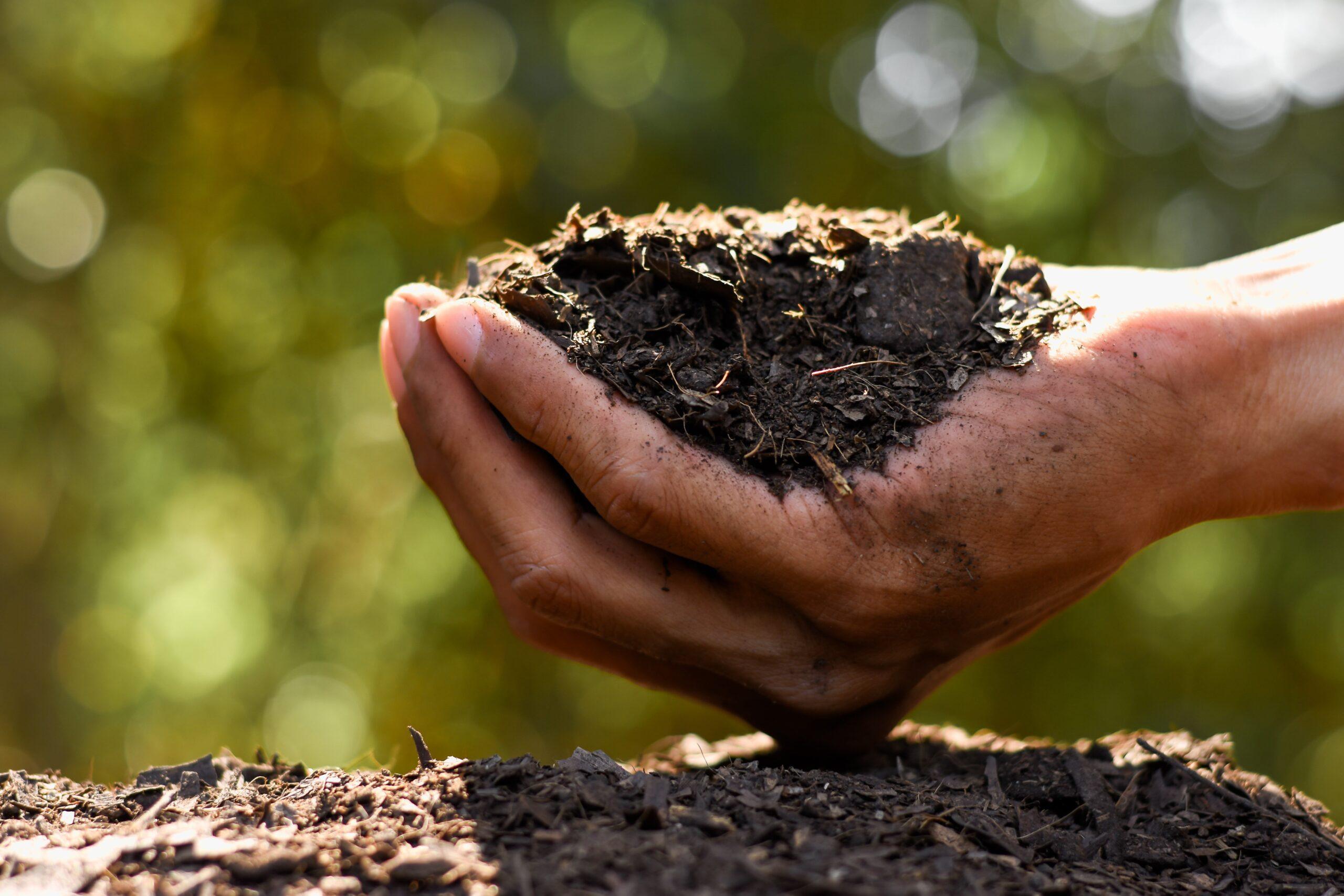 La producción inteligente se sustenta en el uso eficiente de nutrientes